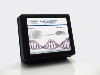 E. coli DNA Amplification Kit in Wells