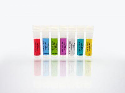 Human DNA Standards Set, A-G, 1 ml