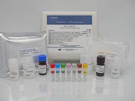 Avitide AVIPure® – AAV9 Residual Ligand Assay Kit