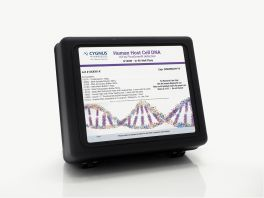 Human Host Cell DNA Detection Kit in Wells