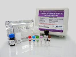 HEK 293 HCP ELISA Kit