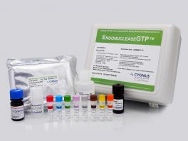 EndonucleaseGTP® ELISA Kit