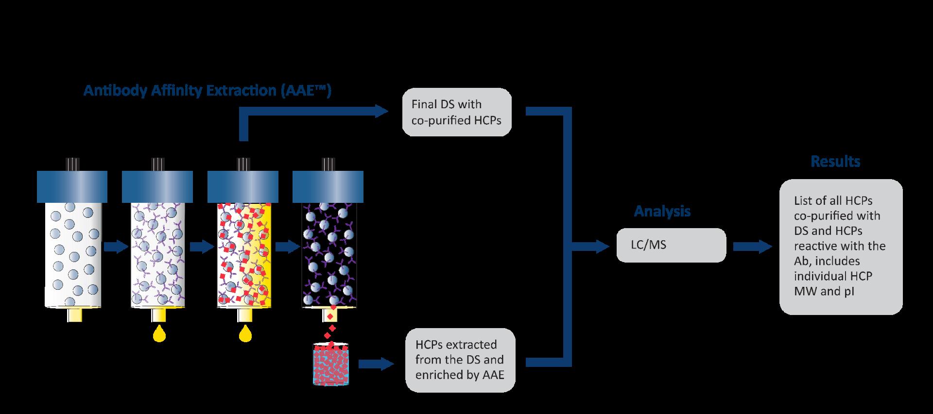 Antibody-Affinity-Extraction_AAE__11-20-02_002_