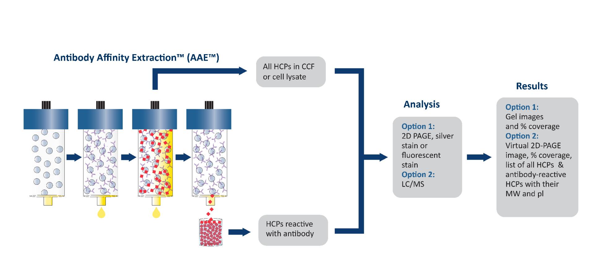 Antibody-Affinity-Extraction_AAE__11-20-F-01